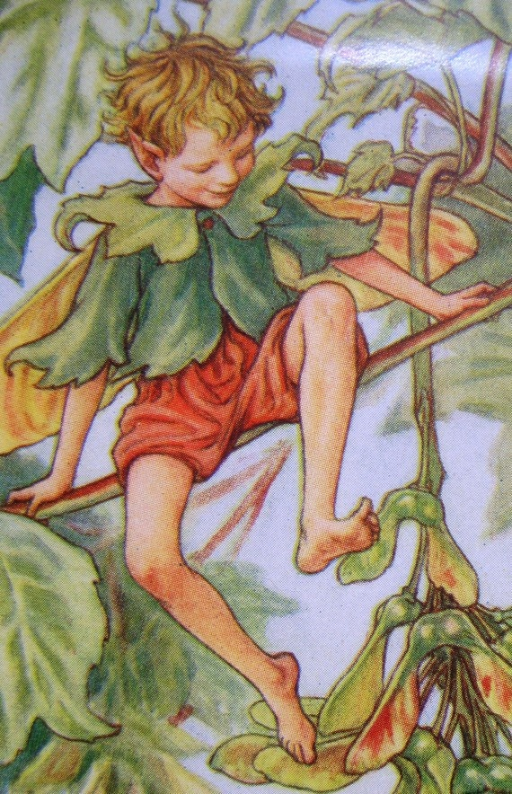 Cicely Mary Barker - A close-up of the Sycamore Fairy