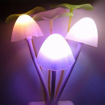 SHARE & Get it FREE | GodRays  G051201 - M01  Smart Light Control Mushroom Night Lamp  Auto Change Color  US PLUG AC 110 - 220 VFor Fashion Lovers only:80,000+ Items·FREE SHIPPING Join Dresslily: Get YOUR $50 NOW! #site:lampsr.us