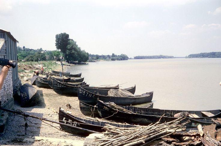 Dans le Delta du Danube, sur une des rives du bras Saint-Georges (Sfântu Gheorghe), un groupe de barques de pêche traditionnelles. Dans l' une de ces barques on peut voir des filets de pêche. En roumain, le nom du type de ces barques est « Lotcă » (« barque de pêche »). Photographie prise entre Nufăru et Mahmudia.
