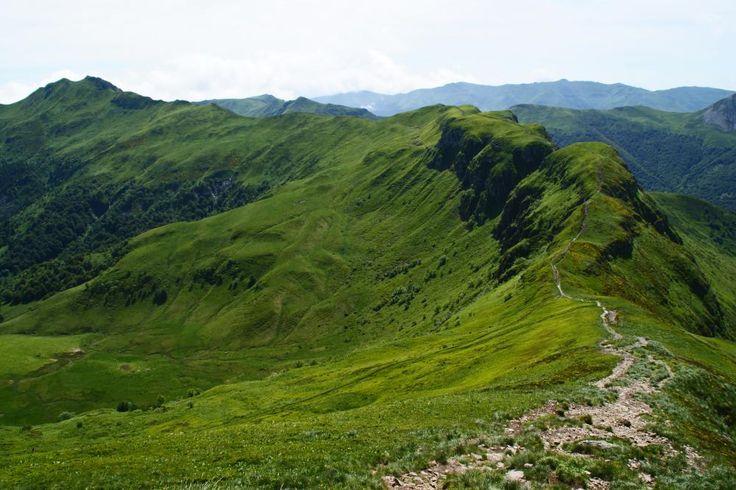 Parc Naturel Régional du Morvan - Google Search