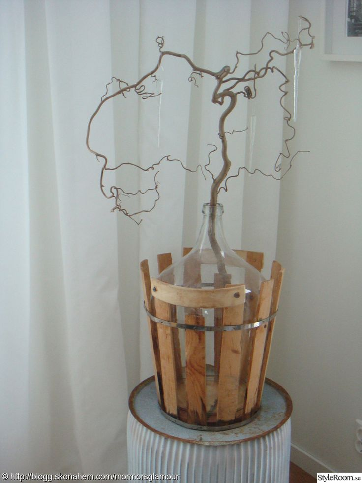 Witch hazel - trollhassel - in large vintage bottle damejeanne. Perfect for Christmas with a pair of baubles hanging.