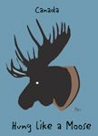 "Magnet - Hung like a Moose - High Quality Magnet. 3.5"" x 2.5"". Made in Canada. $4.29"