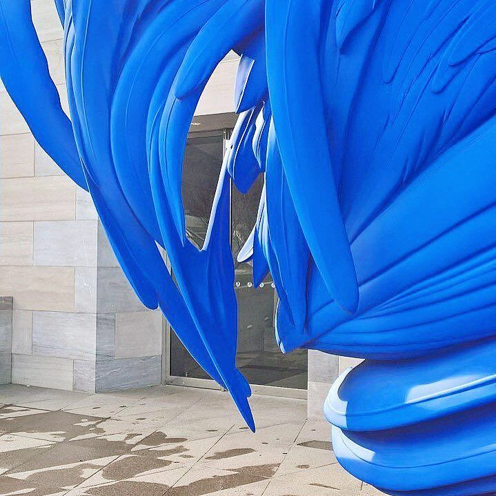#bird of #blue #acrylic #feathers | what I #Love about #DC #myngadc #art