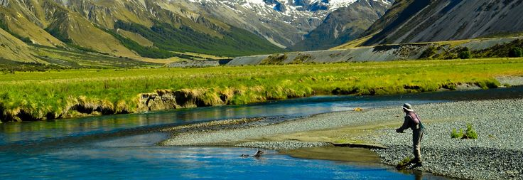 Penembakan New Zealand Pinterest: 1000+ Images About God's Beautiful Creation On Pinterest