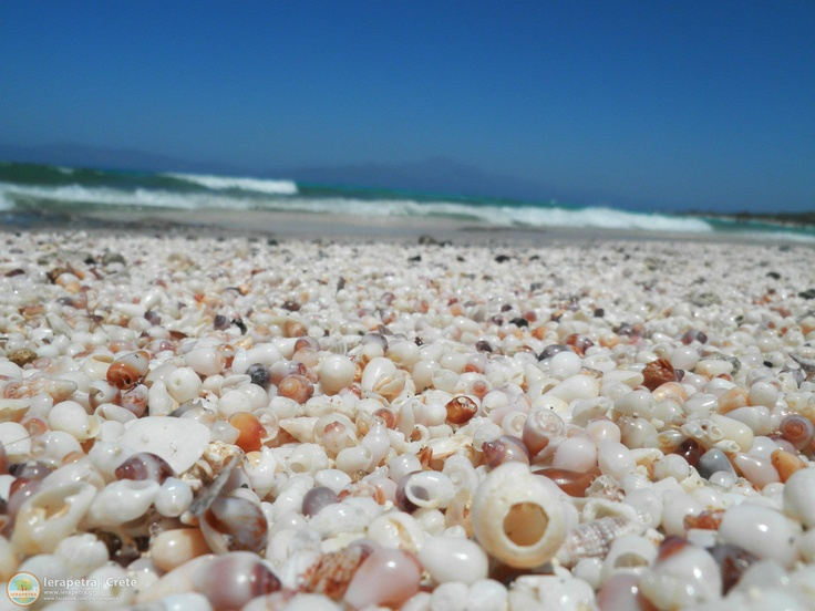 The unique  Chrissi #beach  with beautiful shells . In the background the mountains of #Ierapetra.| Η μοναδική παραλία με της Χρυσής με τα υπέροχα κοχύλια της, Στο βάθος διακρίνονται τα βουνά της Ιεράπετρας.    Photo: John Metaxakis (CC-BY-SA)