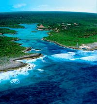 Xel-Ha' MX  This is the most gorgeous natural water park.  The fish watching was amazing!