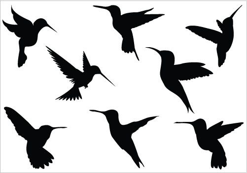 Hummingbirds are searching for honey, there are eight humming birds added to this Birds Silhouette Vector ideal to create awesome nature vector illustrations and bird graphics.