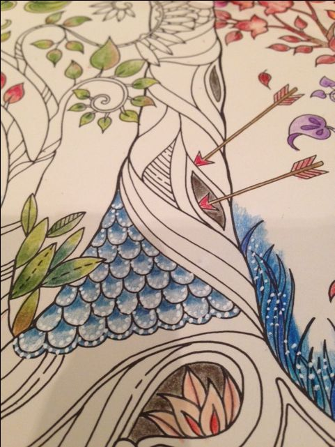 Detail On Double Page Picture In Enchanted Garden Coloring Book I Used A Sakura Jelly