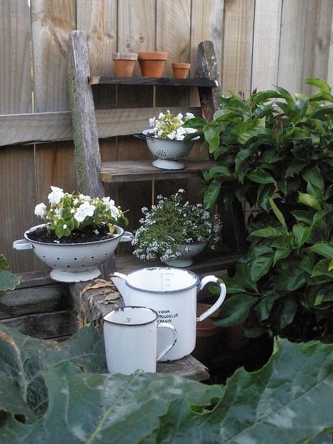 vintage enamelware gardening