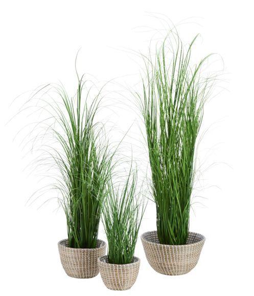 Übertopf aus Seegras in Braun und Weiß - optimal für Ihre Pflanzen