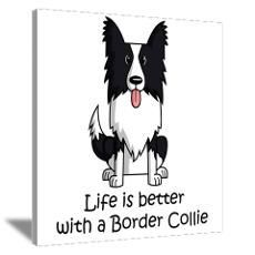how to give yourself a haircut border collie lover 8x10 photo to canvas crafts 9749 | f4e72a5c6879cae1232c3b1f9749bd83