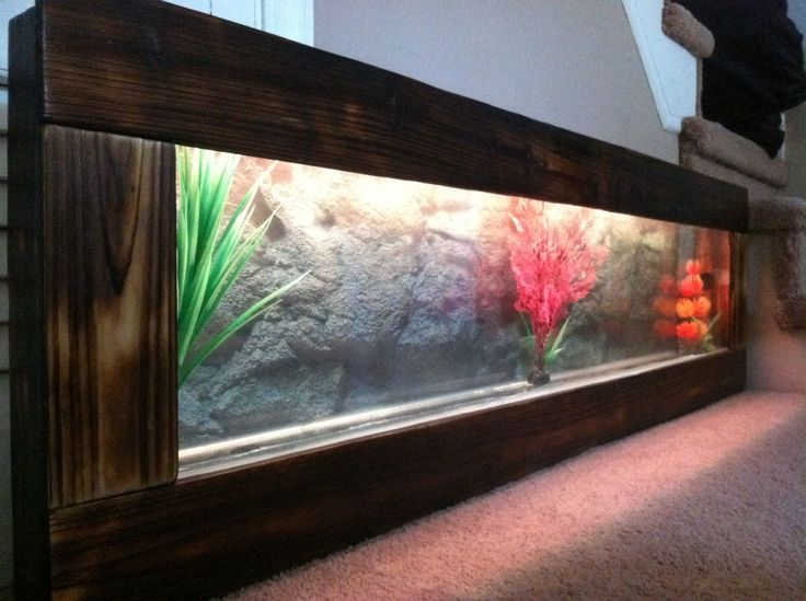 8 Best New Wall Aquariums Free Shipping Images On