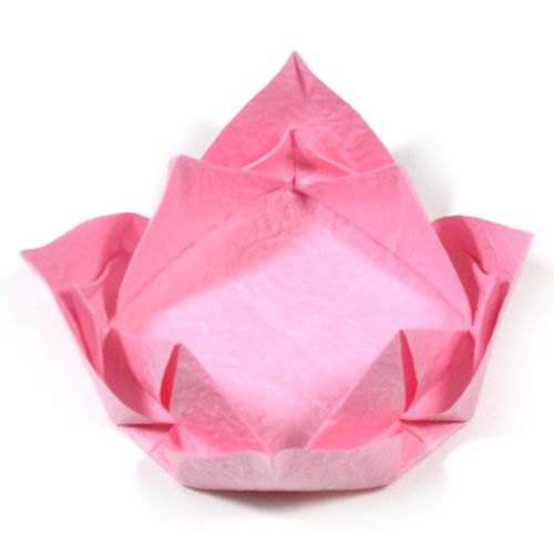 17 best images about origami flower on pinterest for How to make a lotus with paper