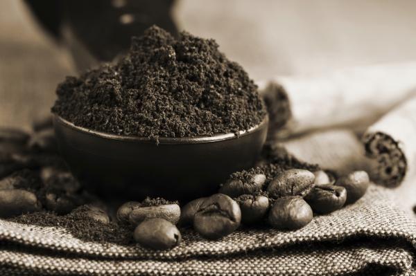 14 bonnes raisons pour lesquelles vous ne devriez plus jamais jeter votre marc de café Le café n'est pas juste utile pour vous réveiller le matin !