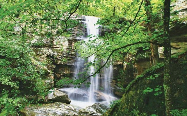 Shawnee National Forest 20 things to do/see
