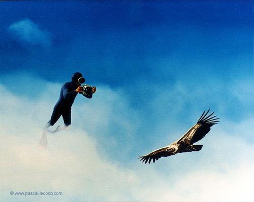 """OLYMPIC GAMES 2012, July 31st: Shooting Men's Skeet Final    pic: """"CAISSON IMPERIAL""""    - Majestic shot - oil on canvas by Pascal Lecocq, The Painter of Blue ®,  18""""x22"""" 55 x 46cm, 1996, lec427, private collection Malakoff, France. © www.pascal-lecocq.com."""