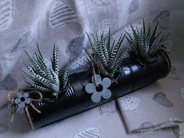 """Jardinière de plantes grasses"""" Zebra'Flower """" : Boîtes, coffrets par alittlecreations"""