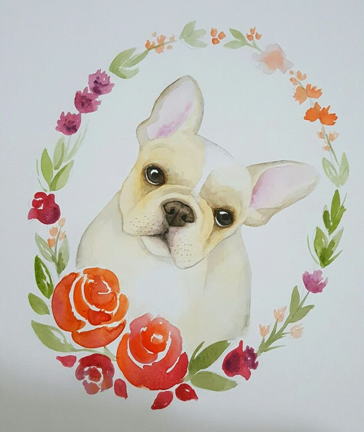 French bulldog Watercolor pet portraits Retratos de pet em aquarela por Carolina Spina Arts