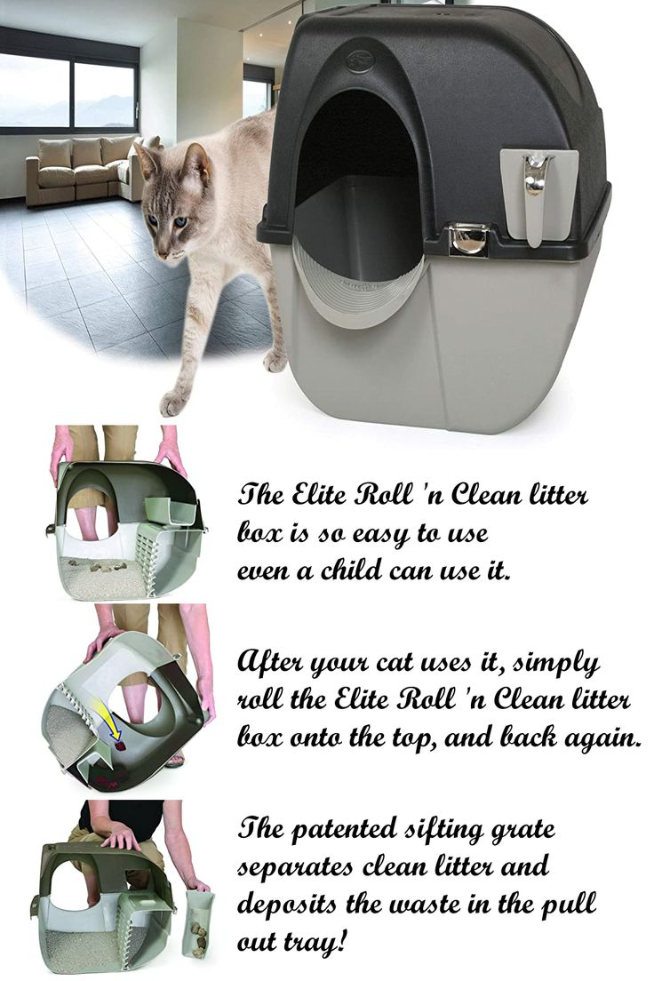 Clean Self Separating Self Cleaning Litter Box In 2020