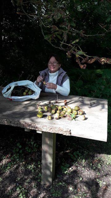 Fasters UrteHave: efterårspynt i haven og Beton frøstande
