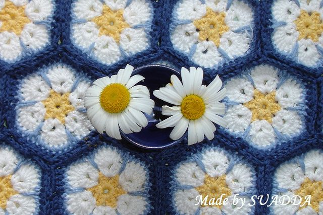 """""""Daisies on blue sky"""" African Flower Days!  Love the colours!!"""