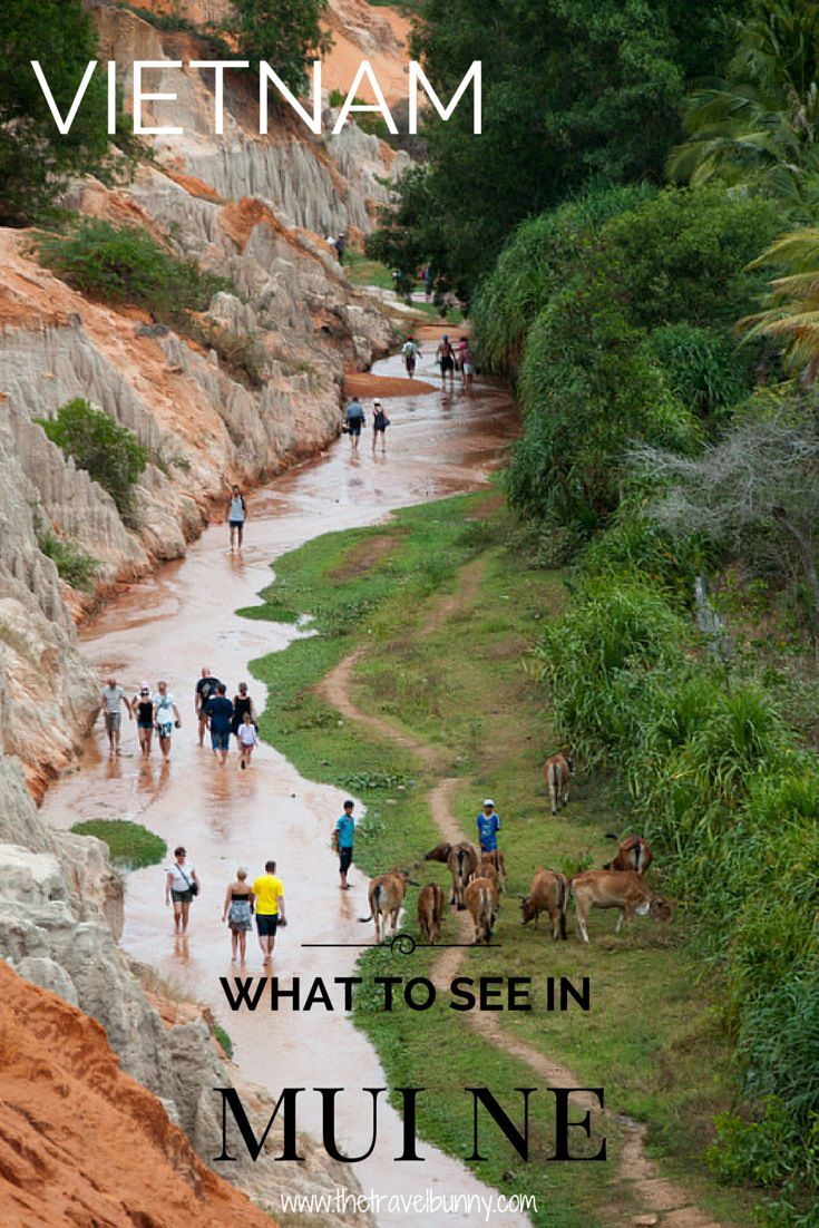 A sightseeing guide to Mui Ne, Vietnam - what to see in Mui Ne; Sand dunes, fairy streams and fishing fleets