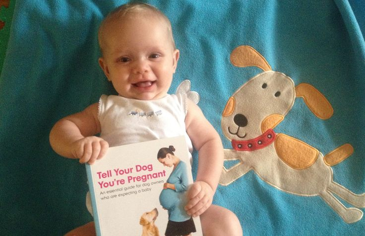 Great article by Dr Jo on introducing your dog to your new baby. Also a give book giveaway!