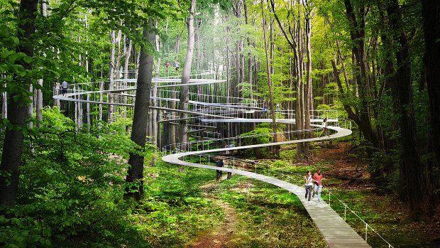 Istanbul bouwt aan enorm bospark met zwevende trampolines en boomhoge paden - Parkorman