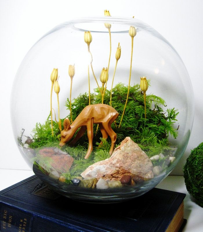 Woodland Bowl Terrarium: Little Fawn