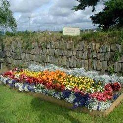 17 best images about memorial garden for john on pinterest for Annual flower garden designs
