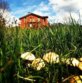 18 best terrazas y jardines ruralka images on pinterest - Terrazas con encanto ...