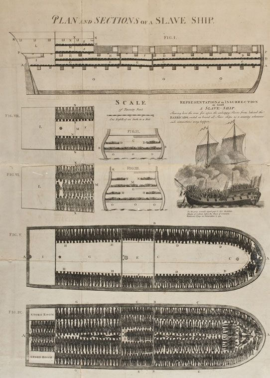 Primary source: Plan and Sections of a Slave Ship; I've used this for teaching about inferences and talking about conditions endured by slaves as part of the Middle Passage