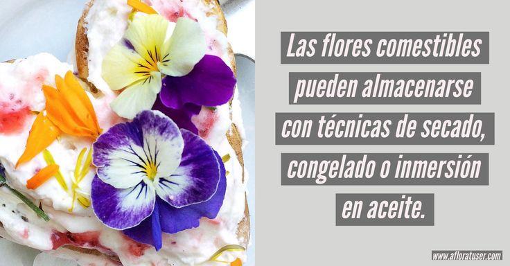 Conservar Flores comestibles