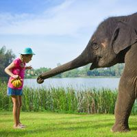 Child friendly holidays in Asia