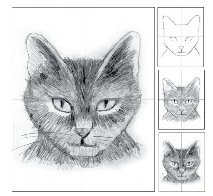 art projects for kids cat - Drawing For Small Kids
