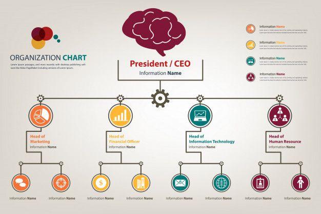 Modern Organization Chart In Vector Style Organization Chart Organizational Chart Design Flow Chart Design