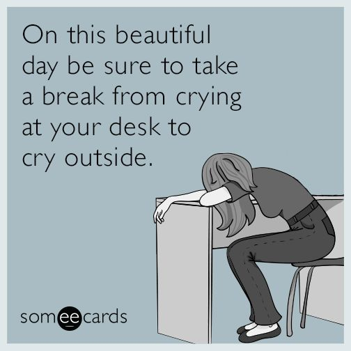"""Workplace   Someecards """"On this beautiful day be sure to take a break from crying at your desk to cry outside."""""""