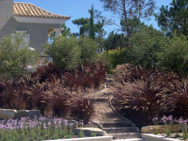 112 plantas jardim mediterraneo Jardim Mediterrâneo no Pinterest