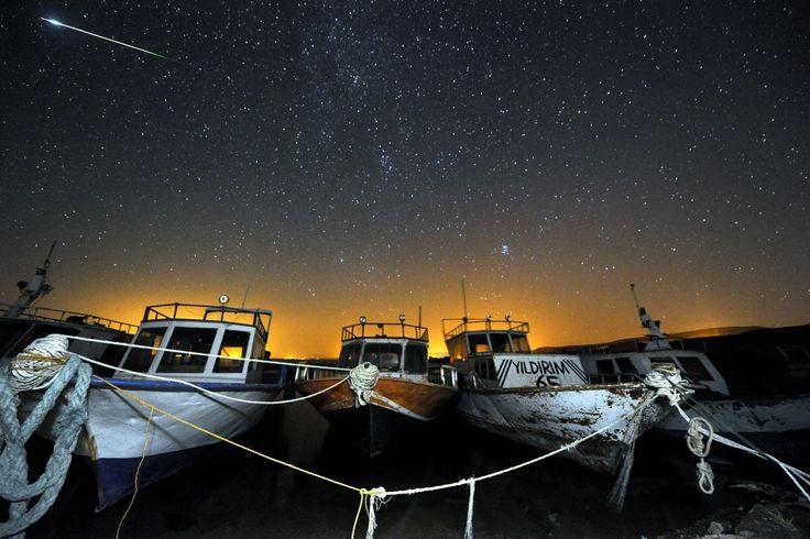 Noce spadających gwiazd