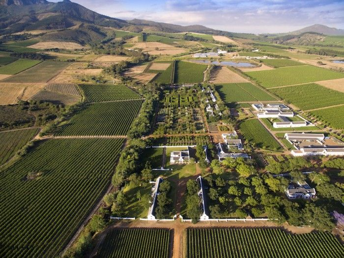 The gardens and vines of Babylonstoren in South Africa