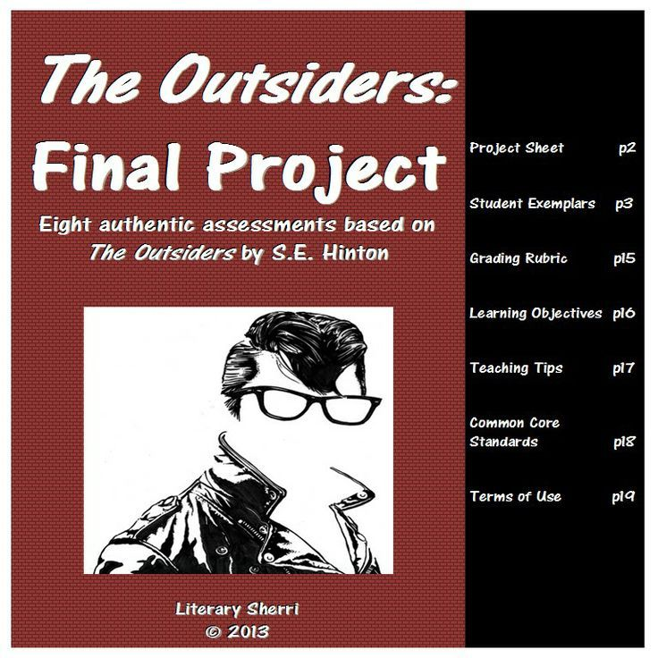 the outsiders by s e hinton essay The outsiders study guide contains a biography of author s e hinton, literature essays, quiz questions, major themes, characters, and a full summary and analysis.