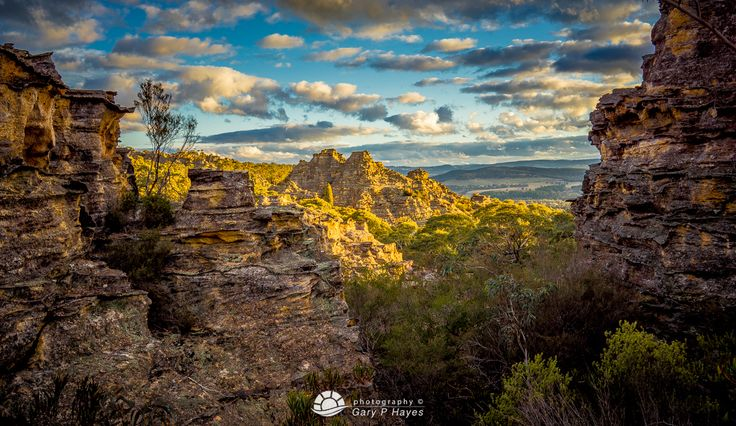 Angus Place - Wollemi NP
