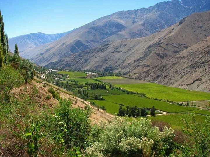 Valle del Elqui.