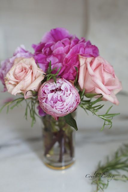 Best 25+ Roses for valentines day ideas on Pinterest | Roses ...
