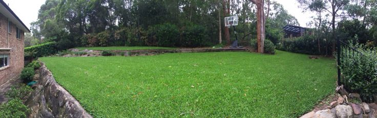 After new lawn