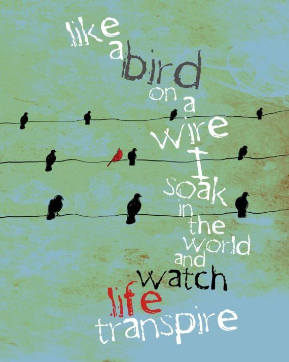 Like A Bird On A Wire / Inspirational Poetic / by studio3ten, $20.00