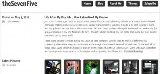 17 Free WordPress Clean & Minimal Themes