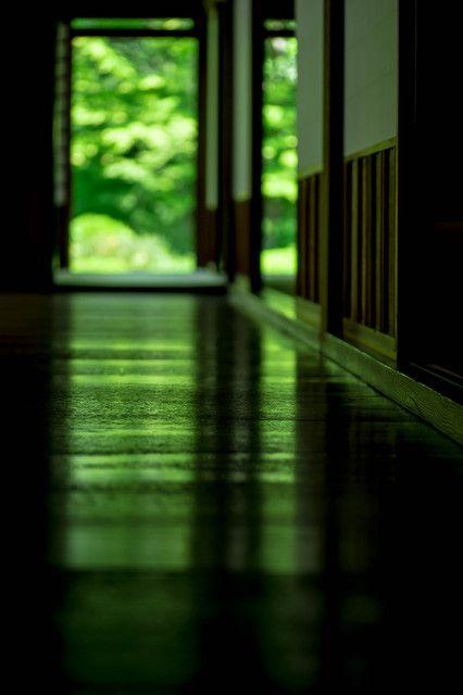 鷹峯の源光庵 Green floor