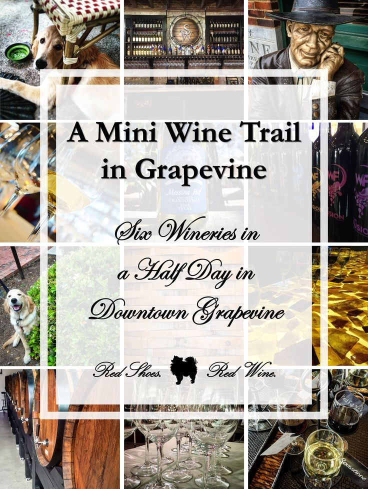 A Mini Wine Trail in Grapevine: Six Wineries in a Half Day! (wine tasting, vineyards, wineries, winery, vineyard, Umbra Winery, Main Street Bistro & Bakery, Liberty Park, Messina Hof Grapevine Winery, Sloan & Williams Winery, Wine Fusion Winery road trip, texas, drink local, Dallas, Fort Worth)