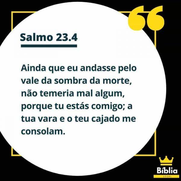 Salmo 23 Versiculo 4 23 4 Ainda Que Eu Ande Pelo Vale Em